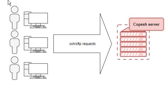 Copssh server