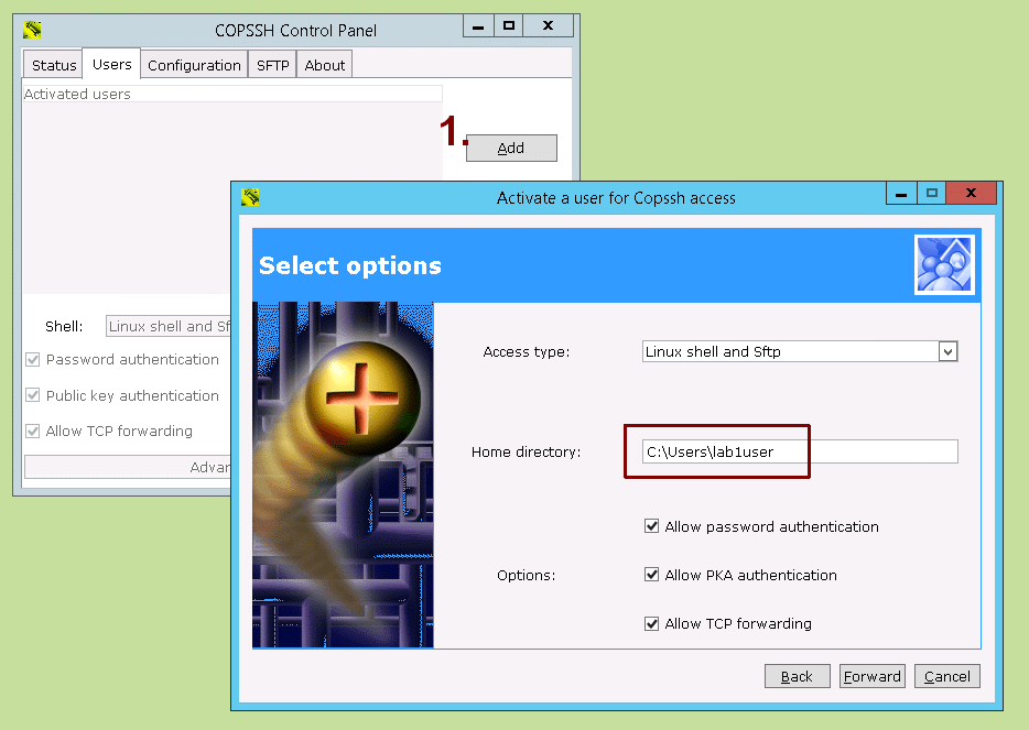 Copssh Control Panel - User Activation Wizard - Home directory